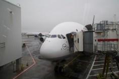 JFK - Unser riesiger A380 ist fertig zum Einsteigen in New York
