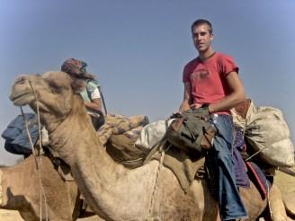Mit Kamelen sind wir in Rajasthan unterwegs.