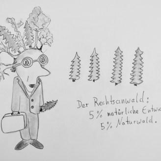 Der Rechtsanwald: 5 % natürliche Entwicklung. 5 % Naturwald - Zeichnung