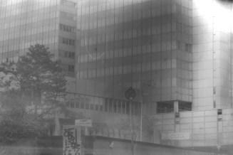 Bonner Stadthaus nach mehrmaligem Bleichbad 2