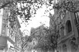 ADOX KB17 - Das Stadthaus über blühenden Kirschbäumen