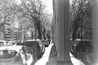 ADOX KB17 - Blühende Kirschbäume an einem Fenster in der Breite Straße