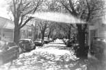 ADOX KB17 - UFO! Lensflare zwischen blühenden Kirschbäumen in der Breite Straße