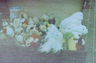 Flohmarkt in der Rheinaue - Plüschtiere, haufenweise Plüschtiere