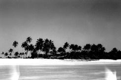 Überbelichteter, sonnengetränkter Strand mit Palmen