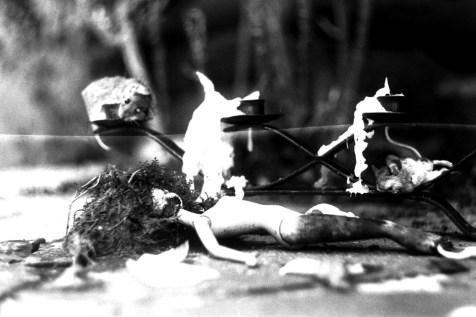 Natura Morta - Stillleben mit toten Mäusen und Barbie 2