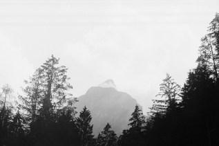 ORWO TC27 Berg hinter Bäumen an einem bewölkten Tag