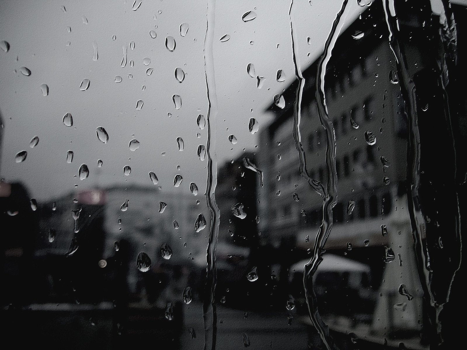 Ploaia - Scoala de soferi Timisoara - KREBS