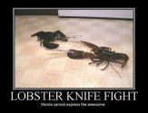 lobsterss