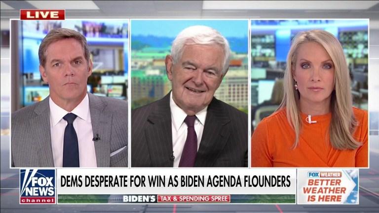 Watch Gingrich warns Biden is mendacity about how Democrats will fund spending invoice – Fox Politics News