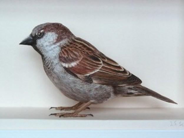 papercraftbirds05-640x480