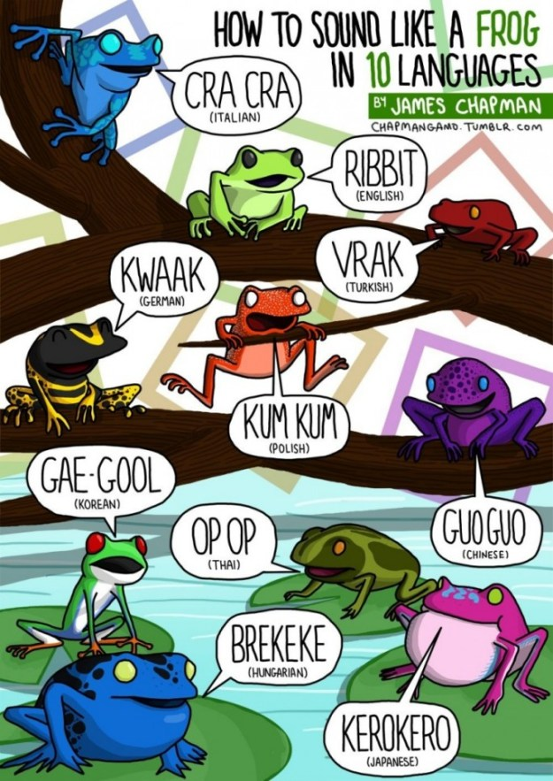 Animal-Sounds-in-Different-Languages-Frog-685x968