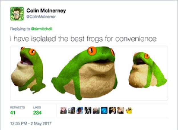 frogman3