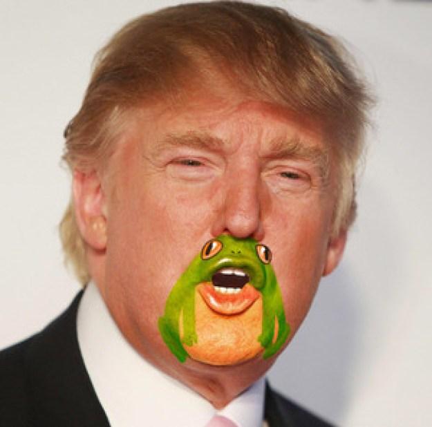 frogman7