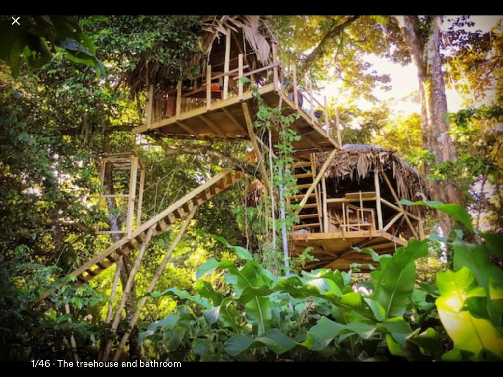 Vacation Home Jungle Treehouse By The Sea Paunch Panama Booking Com