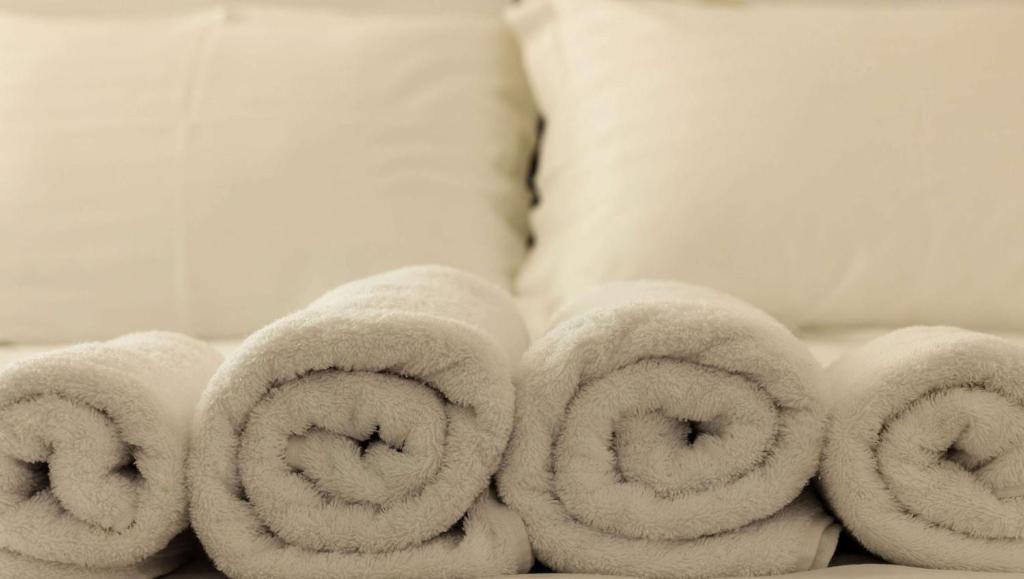 magnuson hotel columbia columbia