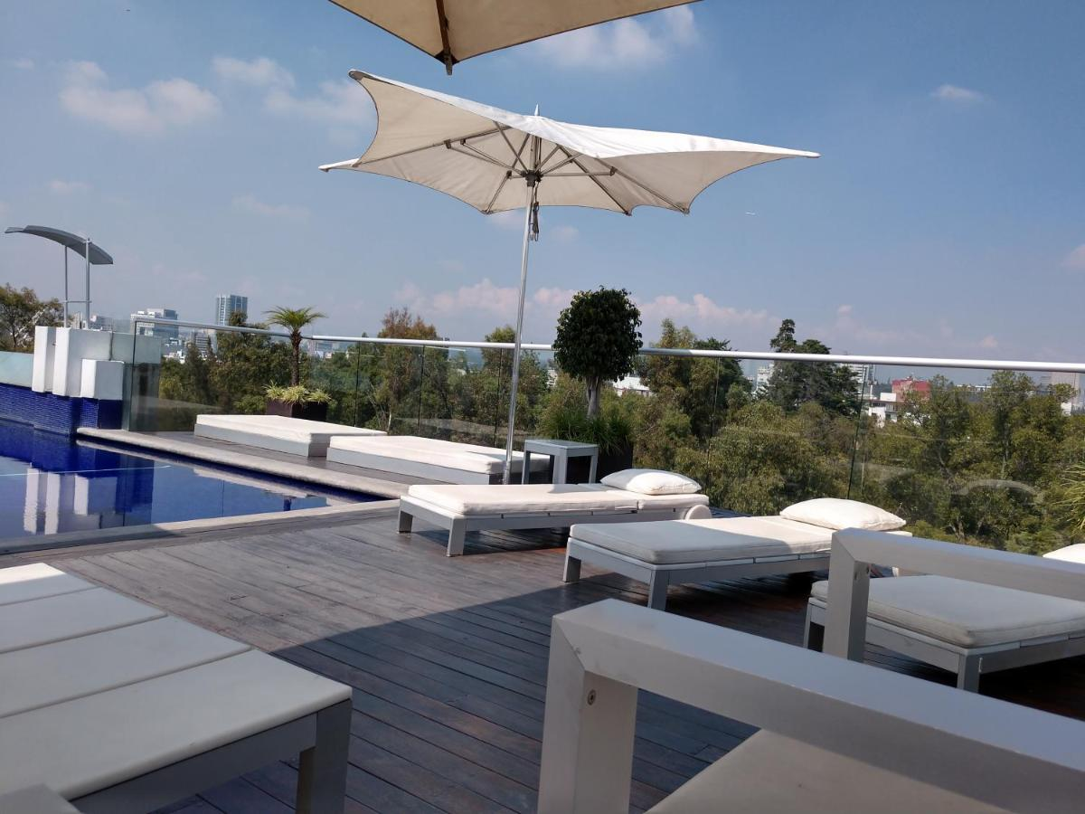 Condesa Park Best Location Pool Mexico City Updated 2020 Prices