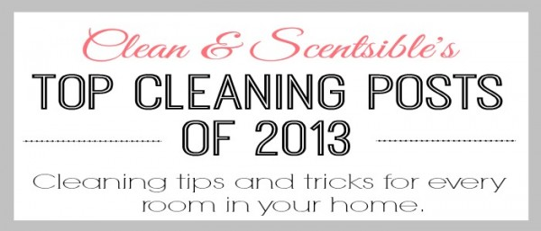 Top Cleaning Projects Of 2013