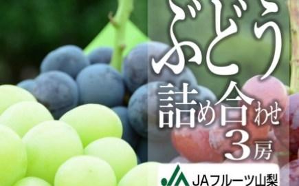 B2-103.甲州市産ぶどう詰め合わせ3房【80】