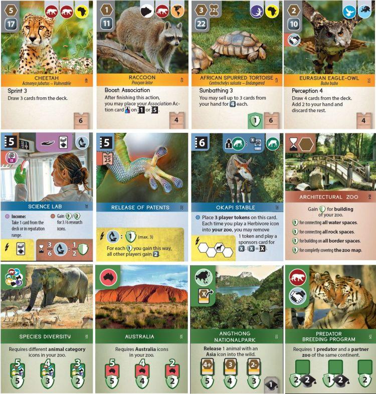 Ark Nova Zoo - eurogame, juego de mesa en español.