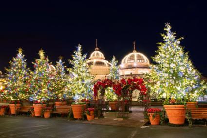 Korean Christmas Traditions LoveToKnow