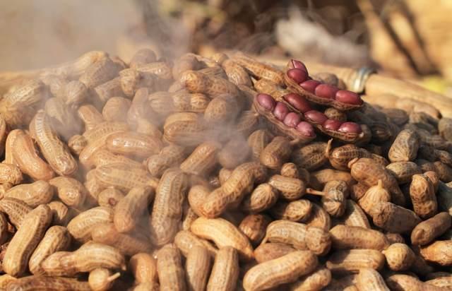 Recipe for Boiled Peanuts
