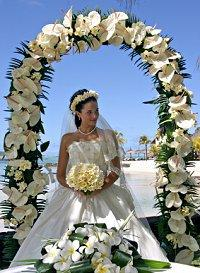Pictures Of Wedding Arches Slideshow