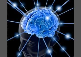 Espaço do Leitor: O que é o ser inteligente? 1