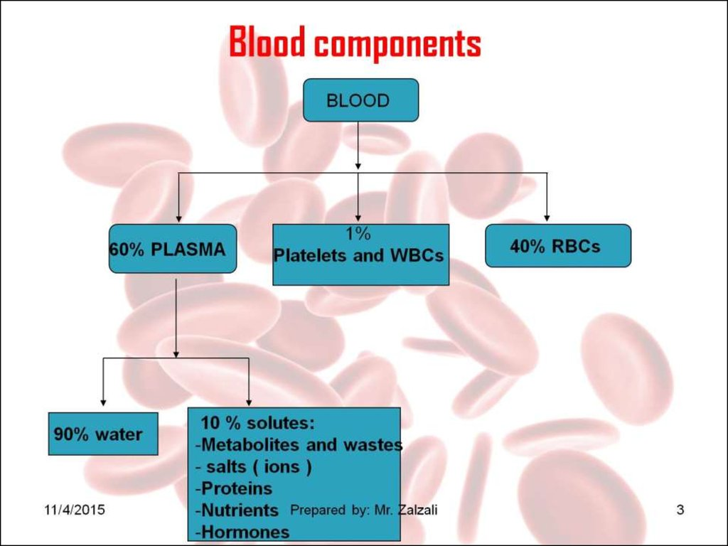Blood Components Handouts