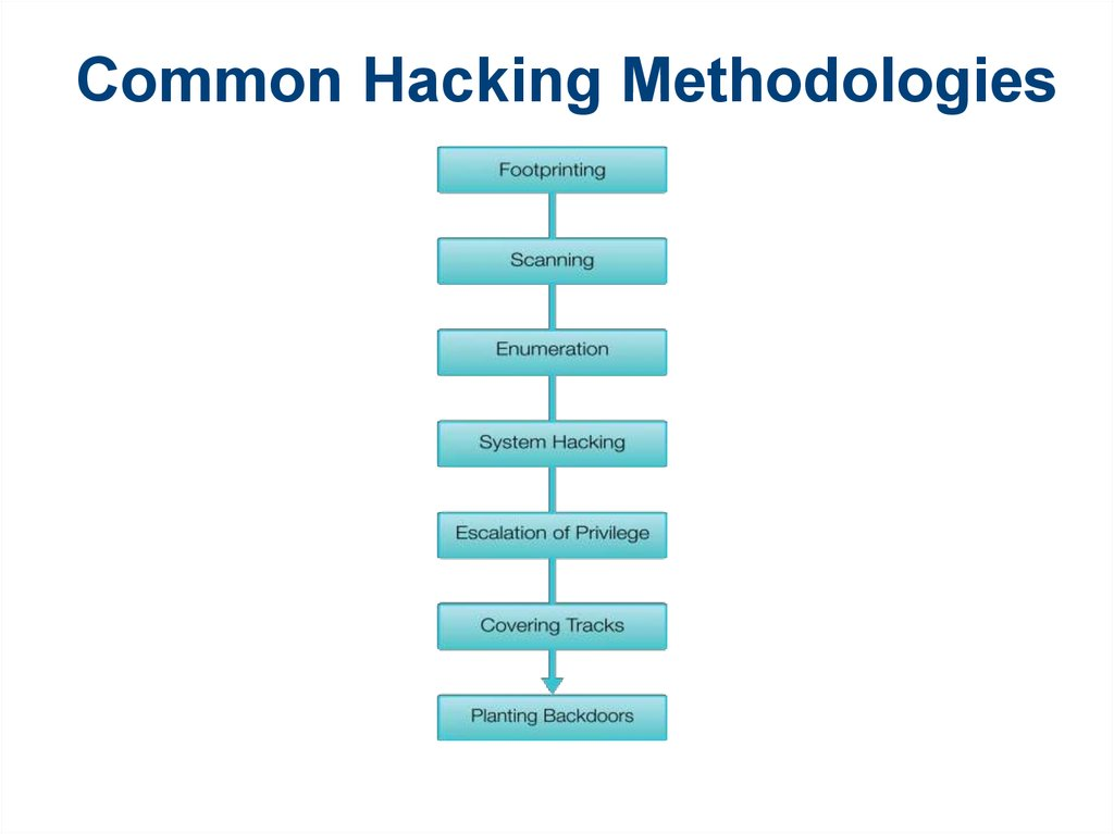 Information Security Techniques