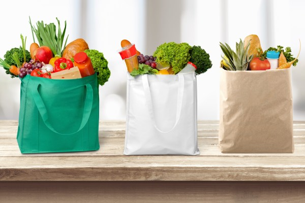 Image result for grocery shopping bags