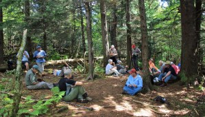 Lunch in the woods