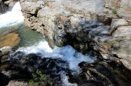 Pulliam Creek - Paula