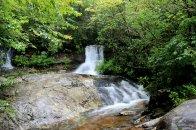 Falls near the beginning of Flat Laurel Creek trail