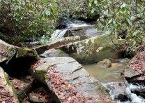 Crossing Poe Creek