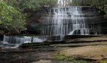 Grogan Falls