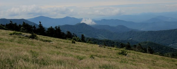 Roan Highlands views