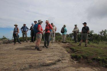 Roan Mountain hike