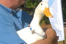 """""""The Beak"""" shown here at a Beads of Courage event appears to have a smoother more youthful beak."""