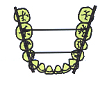 A Practical Approach to Orthopedics & Orthondtics