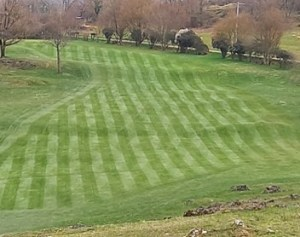 CS jardinier de golf neuvic visite éco-golf d'ariège 3