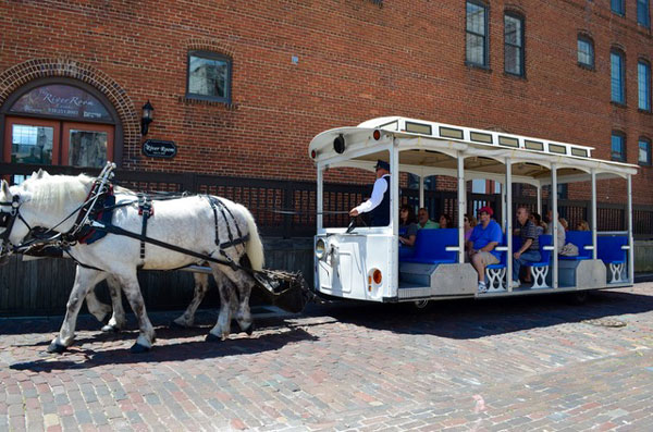 horse-drawn-tours-attraction