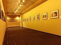 Award-winning photos line the walls of the second-floor hallway of the Times-Union newsroom.
