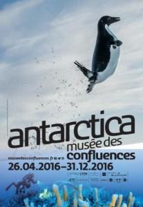 Plongée sous l'Antarctique @ Exposition Antarctica
