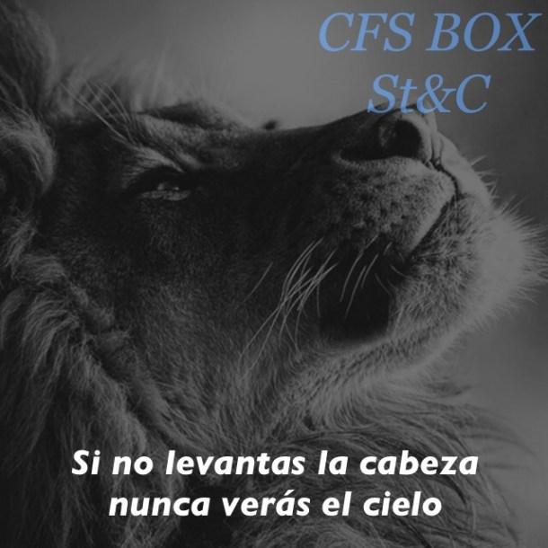 Wod CFS Box Leon CrossFit Sevilla Levanta la cabeza
