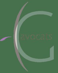 CGavocats