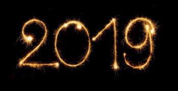 """BEST OF 2019 - Shawn """"Animalize"""" Irwin"""