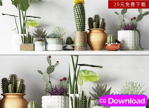 Download Modern Cactus Green Plant Potted Collection Free