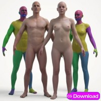 Download  3D Scan Store - ULTIMATE TEXTURED MALE AND FEMALE BASE MESH BUNDLE Free
