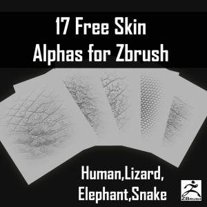 17 Free ZBrush Skin Alphas Pack Download CG Elves